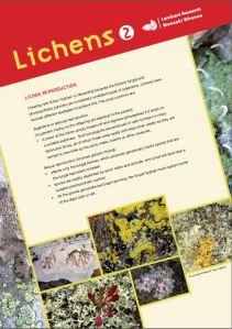 Lichen poster 2
